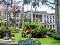 Jardines De La Plaza De Armas.      ========================   Rolando De La Garza Kohrs http://About.Me/Rogako ========================