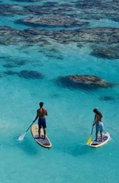 Best Tropical Destinations for Water Sport Adventures