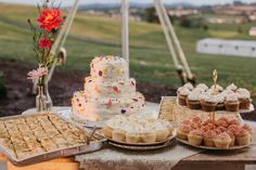 on sunny slope farm wedding photography // maryland, virginia, pennsylvania wedding photography  rustic farm wedding photos // l.a. birdie photography // organic natural wedding photography // rainbow cake desserts