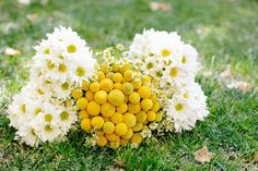 Yellow and White Flowers for Wedding Bouquets