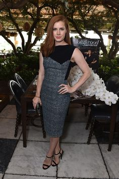 Amy Adams wore a grey and black Roland Mouret dress