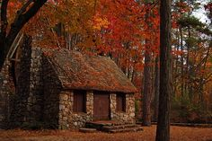 stone cottage in the forest