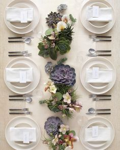 Liven up your tabletops with a variety of succulents