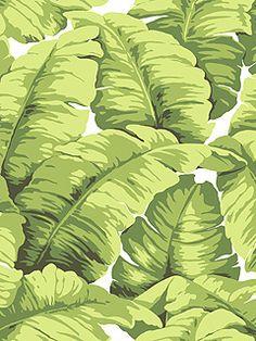 raymond waites design wallpaper