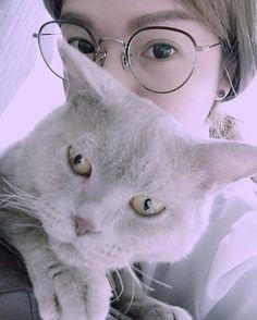 ॐ @watchyou_ #eyevan7285 #cat ...Instagram photo | Websta (Webstagram)