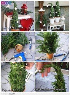 Idee um die Wohung weihnachtlich zu dekorieren. So ein Mini-Tannenbaum passt auch in eine kleine Wohnung