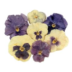 "Decorate your creations with these Edible Pansies and Violas. These edible crystallized real flowers, or ""candied flowers"" are excellent garnishes for cakes, cupcakes, and even beverages. Fruit flavor"
