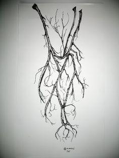 Inner Antebrachium, Blood vessels become tree limbs