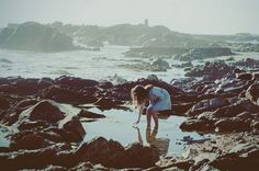 To search in rock pools.