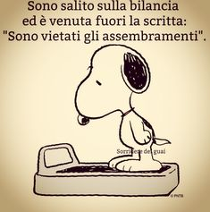 Italian Humor, Wallpaper Quotes, Good Morning, Funny Quotes, Happy Birthday, Comics, Memes, Creative, Instagram Posts