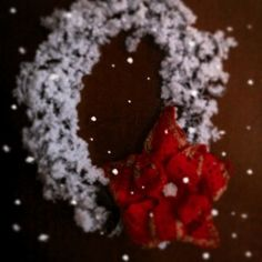 Ghirlanda con stella di Natale