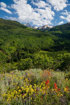 (MB-11071)  Ridgetop overlook of Capitol Creek drainage and distant Capitol Peak - White River National Forest.