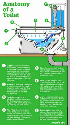 Check out this infographic to diagnose common toilet problems http://www.pioneerplumber.com/