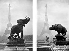 Yvon, photographic postcards of Paris (Palais Trocadero) from the 1920s