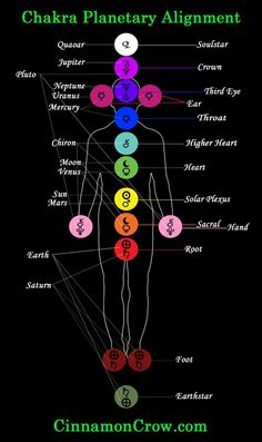 Each one of the seven chakras is a center of a specific kind of energy in the body. Reiki can be used to align the chakras or cleanse them. Chakra Healing, Reiki Chakra, Ayurveda, Le Reiki, Mudras, Chakra System, Qi Gong, Reiki Energy, Chakra Balancing