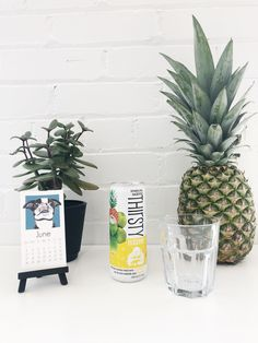 Thirsty Buddha Brands: A review of their pineapple sparkling coconut water! Pineapple Coconut, Coconut Water, Carbonated Drinks, Some Recipe, Vegan Friendly, Eating Well, Rum, Watermelon, Buddha