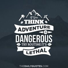 If you think adventure is dangerous try routine, it's lethal. thedailyquotes.com