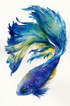Details about Modern Abstract Beautiful Fish Art Watercolour Canvas Painting wall choose size. : Details about Modern Abstract Beautiful Fish Art Watercolour Canvas Painting wall choose size, Abstract Art Beautiful canvas choose Details fish kunstaquare Watercolor Fish, Watercolor Canvas, Watercolor Animals, Canvas Art, Tattoo Watercolor, Painting Canvas, Watercolour Drawings, Watercolor Paintings Tumblr, Canvas Size