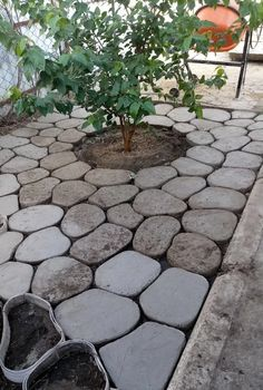 1 million+ Stunning Free Images to Use Anywhere Backyard Patio, Backyard Landscaping, Concrete Garden, Concrete Stepping Stones, Garden Planning, Garden Projects, Garden Paths, Garden Inspiration, Outdoor Gardens