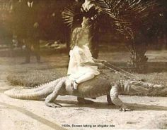 Steve Irwin's great great grandmother.  So, that's where he got it!