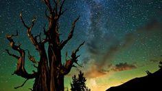 Stunning Ecosystems | The Rainforest Site Blog
