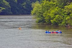 Zen Tubing with 2 Asheville NC locations. Take a lazy river float trip on the French Broad River. Expect cushy-comfy tubes with backrest, no reservations, trips leave every 10 minutes between 10:30 AM – 4 PM for 2.5 hours of fun! Open 7 Days. Minimum age 4 years. Picnic & swim along the way.   855-936-8823 Downtown Asheville: 608 Riverside Dr., Asheville, NC South Asheville: 1648 Brevard Rd, Asheville, NC zentubing.com/  #asheville #tubing #frenchbroadriver  AshevilleVacationHomes.com