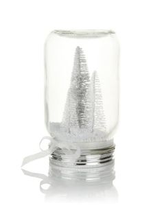 M&S Christmas Decoration idk about the trees, but it is a cute idea for all my wedding Mason Jars!