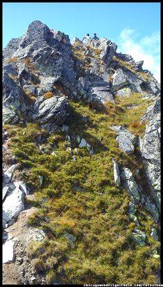Tatry / Szpiglasowy / Góry / Tatra Mountains #Tatry #Tatra-Mountain #Góry #szlaki-górskie #piesze-wędrówki-po-górach #szczyty-górskie #Polska #Poland #Polskie-góry #Szpiglasowy-Wierch #Szpiglasowa-Przełęcz #Zakopane #Tatry-Wysokie #Polish Mountains #Morskie Oko #Czarny-Staw #na -szlaku-z-Doliny-Pięciu-Stawów-poprzez-Szpigla sową-Przełęcz-i-Szpiglasowy-Wierch-do-Morskiego-Oka #turystyka górska