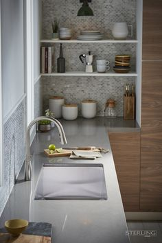 Looking for a sink that's tasteful and has more usable space? Enter Ludington. It's the stainless steel sink that is functional and stylish for any modern kitchen.