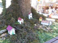 cascata de S.Antonio Birds, Outdoor Decor, House, Home Decor, Bird, Haus, Interior Design, Home Interiors, Homes