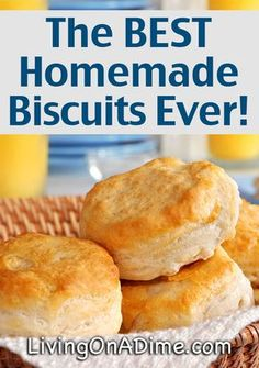 Poppy's Homemade Biscuits Recipe 4 cups baking mix (Bisquick) cup club soda 8 oz. sour cream 1 stick butter Melt butter in pan. Place biscuits in the pan and turn over once making sure they are well coated in butter. Bake at until brown. Popeyes Biscuit Recipe, Bisquick Recipes Biscuits, Pilsbury Biscuit Recipes, Homemade Biscuits Recipe, Buttermilk Biscuits, Popeyes Biscuits Recipe From Scratch, Soda Biscuit Recipe, Easy Biscuit Recipe 3 Ingredients, Keto Biscuits