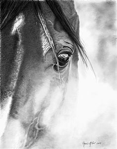 """Into the Morning"" by Glynnis Miller (Pencil)"