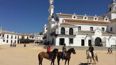 Trail ride throught Doñana National Park to El Rocio 25km!