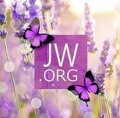 Jehovah's word