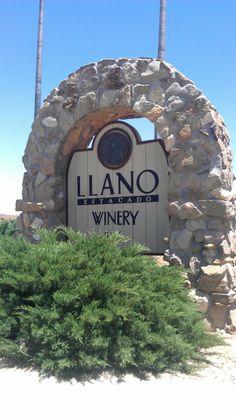 Worked - Methodist Hospital - Llano Estacado Winery. Lubbock, Texas