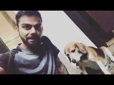 Virat Kohli Speaks About His Not Playing IPL 2017 | Big Short Videos Ipl 2017, Virat Kohli, Trending Videos, Big, Youtube, Animals, Fictional Characters, Animales, Animaux