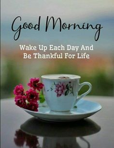 Good Morning Flowers Quotes, Good Morning Image Quotes, Good Morning Picture, Good Morning Messages, Morning Pictures, Good Morning Wishes, Good Morning Honey, Happy Sunday Morning, Happy Sunday Quotes