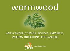 Over 80% of the population showing + for #parasites. Remove them with Wormwood + Clove + Green Black Walnut Hull #health #diy #food #flashcards #eczema