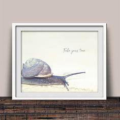 Take Your Time Snail