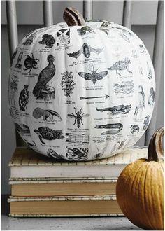 Decoupage Pumpkin with Black & White Prints