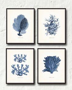 Vintage Indigo Blue Sea Coral Print Set No. 2 – Belle Maison Art– Belle Maison Art – Printed on archival canvas - Makes a charming vintage display - Multiple Sizes - Free US Shipping – Belle Maison Art