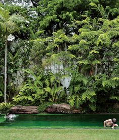 tropical garden + green pool. Interesting the use of large rocks on the edge