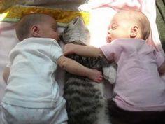Onze harten smelten als we dieren liefdevol naar kinderen zien kijken. Heb jij ook een leuke foto van jouw kat met