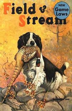 B 1941 Upland Game Gun Dog Bird Shoot Pheasant Hunt Springer Outdoor Camp Poste | eBay