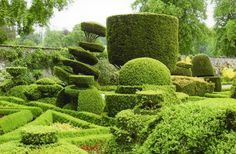 Levens Hall Garden.  LHistoric Topiary Garden in South Cumbria  A grade I listed garden dating from 1694 – through a combination of circumstance and love the gardens at Levens Hall have survived in their original design.  The topiary is some of the oldest in the world and justifiably famous.  The historic topiary garden also incorporates a small orchard of apple trees and medlars, a nuttery and herb garden, a bowling green, a rose garden, herbaceous borders and seasonal bedding.