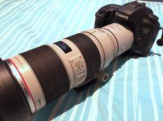 #Canon EOS 7D Mk II Canon EF 70-200mm F2.8L IS II USM Canon EF 2X III