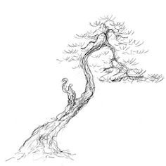 Bonsai Art On Pinterest Bonsai Ink Paintings And Bonsai
