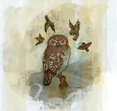 owl and birds by Kathleen Cameron