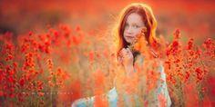 Amazing photographs!
