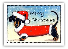 Dachshund Dog In Snow Painting Pack Of 6 Christmas Cards By Suzanne Le Good